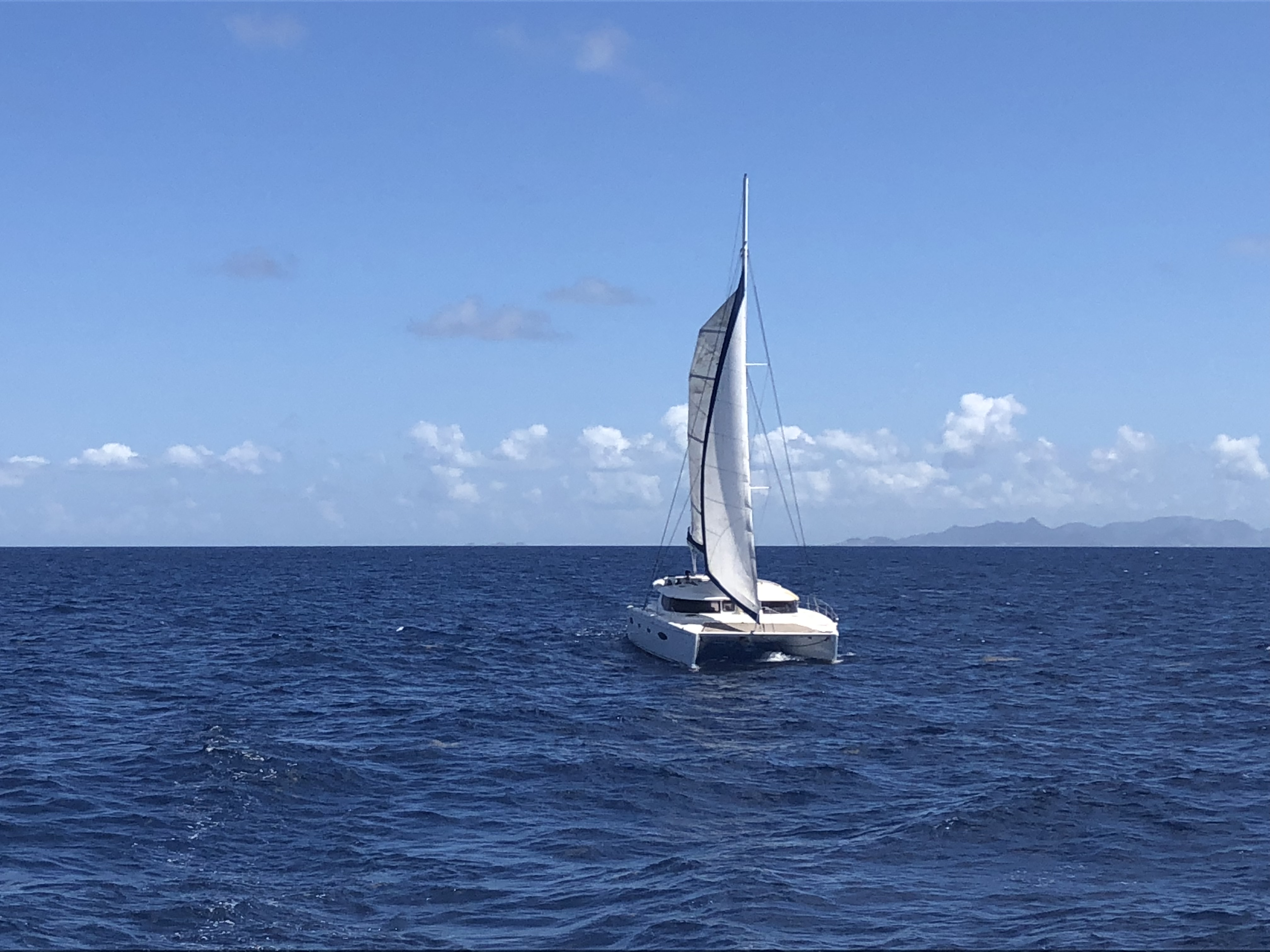 Grenada, Hog Island. Sailing Catamaran Salina 48 ft