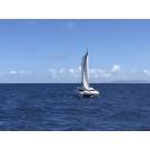 Grenada, Hog Island. Sailing Catamaran Salina 48 ft