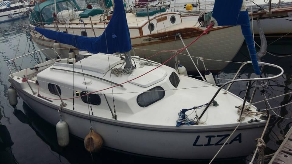 Cyprus, Latchi Marina. KingFisher..